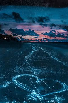 Bioluminescent sea in the Maldives! Maldives travel and honeymoon sounds incredible! Check out 20 UNREAL Travel Destinations on avenlylanetravel.com. These top places in the world to vacation at will be at the top of your bucket list the second you see them! #avenlylanetravel #avenlylane #maldives #beaches #beach #bucketlist #traveltips #travel #wanderlust #bioluminescentbay