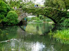 Usa el amor como un puente