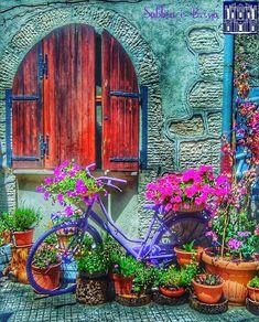 Abrimos as janelas do coração para receber o novo renovemos a fé a energia a força a positividade a alegria a coragem vivendo cada dia com a leveza das flores e exalando palavras de amor como o seu perfume suave. Boas-vindas para Agosto.  #agosto #recomeço #gratitude #paz #energia #fé #acredite #believe #choice #escolhas #reflexao