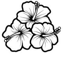 Draw Flower Patterns Hummingbird And Hibiscus Drawing Bing Images Sketch Coloring Page Hibiscus Flower Drawing, Hibiscus Tattoo, Hibiscus Plant, Plumeria Tattoo, Hibiscus Flowers, Flower Art, Flower Images, Hawaii Flowers Drawing, Hibiscus Bouquet