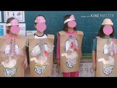 Orientaciones para la elaboración de Maqueta del sistema digestivo - YouTube