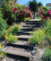 Image detail for -Hillside Landscaping Tips Hillside Garden, Sloped Garden, Garden Paths, Garden Ideas For Sloping Gardens, Landscaping A Slope, Landscaping Ideas, Garden Stairs, Outdoor Stairs, Most Beautiful Gardens