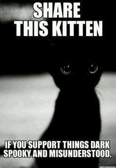 I love the dark
