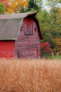 Autumn Barn Beauty