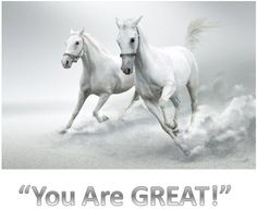 Time for a new wall mural? A top-quality, affordable wall mural – fast and free delivery and high customer satisfaction. White Background Quotes, Black And White Background, White Backgrounds, Black White, Horse Wallpaper, Photo Wallpaper, Chelsea Hotel, Horse Quotes, Keep It Real