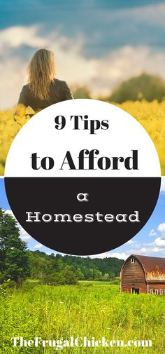 Think you can't afford a homestead? Think again! Here's 9 tips to help you afford one! From TheFrugalChicken.com/?utm_content=bufferdeead&utm_medium=social&utm_source=pinterest.com&utm_campaign=buffer: