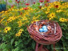 Take A Wreath - Make A Decorative Bird Nest