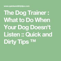 The Dog Trainer : What to Do When Your Dog Doesn't Listen :: Quick and Dirty Tips ™