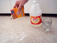 Method for cleaning dog urine out of carpet...