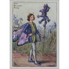 Bluebell (Barker) | Tilton Crafts