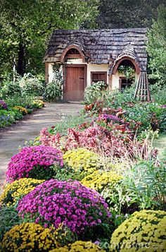 a little country cottage surrounded by pretty garden.