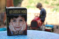 Quite a lot has been written about Montessori in the past century, but any Montessori teacher worth her salt will tell you that reading straight from the source is invaluable. It is the glue that binds us as Montessorians, regardless of how we manage our classrooms, what projects we choose take on, or how we …