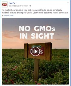 Hunt's gets it wrong - there are no GMO tomatoes!
