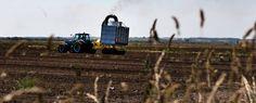 Fremtidens landmand ejer ikke sin gård                    Pengestærke pensionskasser står klar til at overtage. Ung landmand er tændt.