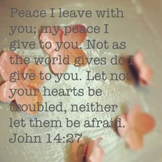 Peace from God's Word