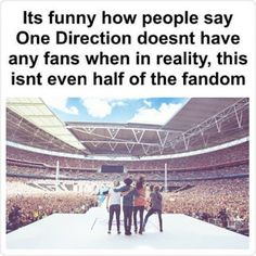 The Fandom of 1D
