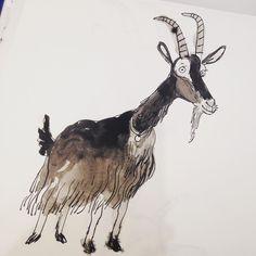 216 mentions J'aime, 8 commentaires – kathryn durst (@kathryndurst) sur Instagram : « Yep it's a goat #inktober »