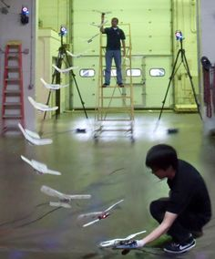 Flapping Robotic Birdplane Lands Right on Your Hand - IEEE Spectrum
