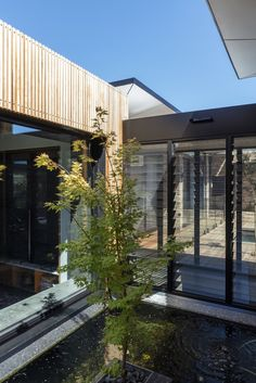 Gallery of Bundaroo House / Tziallas Omeara Architecture Studio - 17