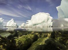 Above and below, captured off the coast of Nuuk, Greenland. #2013 #photography #gopro #underwaterphotography #underwater #icebergs #greenland #nuuk #arctic #grønland #godthåb #arktis #colourfulnuuk #visitgreenland #ilovegreenland #greenlandpioneer #nature #cryosphere #ginr #gcrc #arc #asp #auarctic