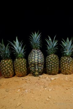 body-art-paintings-nature-inspired-illusions-fruit-5