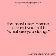 "so true! chewing my new shoes: ""WHAT ARE YOU DOING!"" climbing out of the bath: ""what ARE you doing?"" you get the idea!"