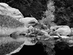 Boulders and Tree, Merced River, Yosemite National Park, California 1983 John Sexton