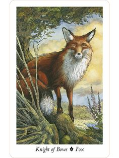The Wildwood Tarot - The King of Bows