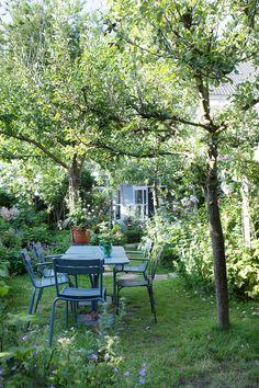 Bohemiskt stilrent i sekelskiftesvåningen med lummig trädgård - Sköna hem