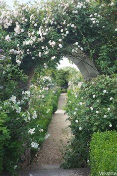 Seem like a secret garden