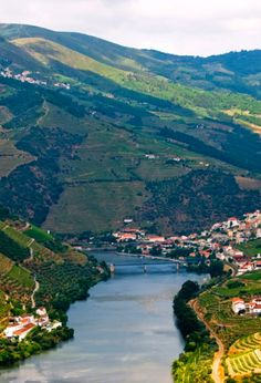Porto in Portugal is the birth place of Port wine, one of the world's great classic wines. Read more about Port wine. Douro Portugal, Douro Valley, Port Wine, Azores, Wineries, Country, The World's Greatest, Amazing Places, Beautiful Landscapes