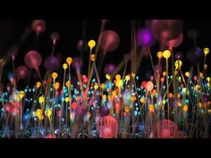 "Bruce Munro's ""Field of Light""  					01  					2012  				    				  					I just discovered"