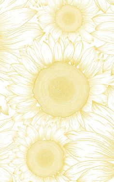 Welcome the freshness of sunshine yellow to your wall with the sunflower etch wallpaper, a wonderfully detailed mural. Mandala Wallpaper, Sunflower Wallpaper, Flower Phone Wallpaper, Cool Wallpaper, Wallpaper Backgrounds, Sunflower Design, Yellow Sunflower, Black Aesthetic Wallpaper, Aesthetic Wallpapers