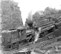 Logging train at Black Rock in Polk County, Oregon, 1890's :: Ben Maxwell…