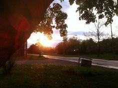 Sunset spring 2013