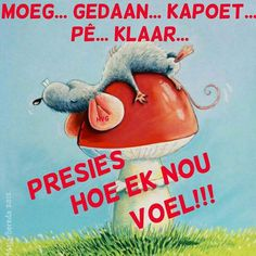 Sweet Quotes, Wise Quotes, Funny Quotes, Qoutes, Afrikaanse Quotes, Goeie Nag, Proverbs Quotes, Morning Pictures, Good Night Quotes