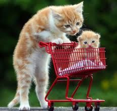 compras?