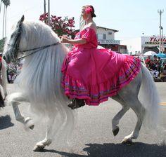 Getrudis on le horse