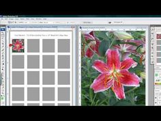 Now you can make your own collage sheets with this Layered Photoshop Template! Super simple and easy to use, just add your images, place them behind the Temp...