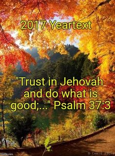 "Psalm 37:3 ~ ""Trust in JEHOVAH and do what is GOOD..."""
