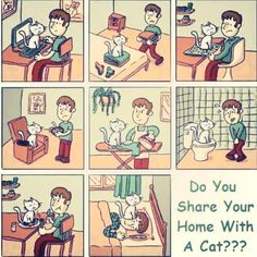 Do you share your home with a cat???