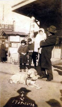 Last shot of Hachikou ハチ公 (November 10, 1923 - March 8, 1935) at Shibuya, Japan - December 30, 1934 Source Shibuya-ku, Provincial Museum 渋谷区郷土博物館