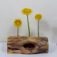 Rustic Flower Vase Found Wood Test Tube Bud Vase Gift Table Centerpiece Home Decor Mothers Day Gift Cabin Décor Rustic Wedding Décor on Etsy, $15.00