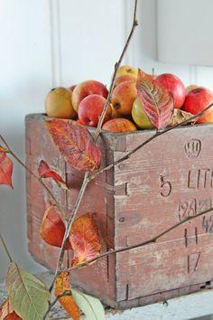 Autumn Cottage..