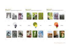 "Free printable ""seasons"" cards, montessori acitivity, colors, language"