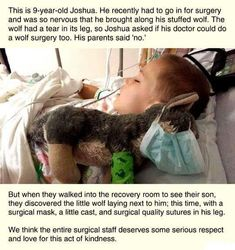 15 Wholesome Animal Memes To Start Off The Week Right post about a surgeon who fixed a sick boy's stuffed toy Memes Humor, Funny Memes, Cat Memes, Funniest Memes, Sweet Stories, Cute Stories, Beautiful Stories, Happy Stories, Jesus Stories