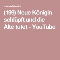 (199) Neue Königin schlüpft und die Alte tutet - YouTube