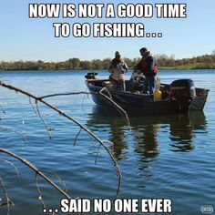 Fishing Never