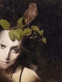 Call of the wild by Sarah Jarrett