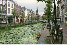 delft foto's   ... .com, dé stadsgids voor Delft - Alle Informatie en tips voor Delft